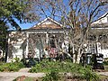 Imperial Christmas Tree Freret New Orleans.JPG