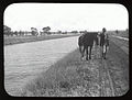 Irrigation canal at Yanco.jpg