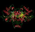 Isocitratdehydrogenase 2.png