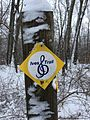 Ives Trail Spur Marker.jpg