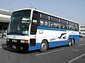 JRbuskanto S654-87478 Queen-W.jpg