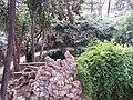 Jardín de Monforte 89.jpg