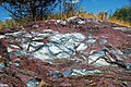 Jaspilite banded iron formation (BIF) (Negaunee Iron-Formation, Paleoproterozoic, 1.874 or 2.11 Ga; Jasper Knob, Ishpeming, Michigan, USA) 90 (47976327017).jpg