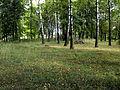 Jewish cemeteries in Kossovo 2a.jpg