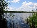 "Jezioro""Paprocany"" - panoramio.jpg"