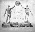 John Abernethy; certificate showing a skeleton and an écorch Wellcome L0000360.jpg