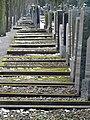 Juedischer Friedhof Mannheim 08 fcm.jpg