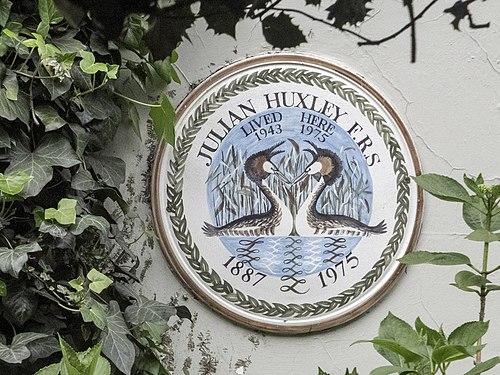 Julian huxley plaque in london