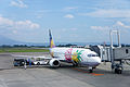 Kagoshima Airport18s3s4592.jpg