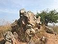 Karighatta peak tallest point rock formation.jpg