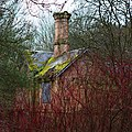 Keepers cottage through the trees.jpg