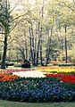 Keukenhof Gardens 1976 - panoramio.jpg