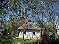 Khalep'ya, Kyivs'ka oblast, Ukraine - panoramio (4).jpg