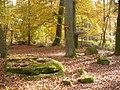 Kiesgraeber - geo.hlipp.de - 15156.jpg
