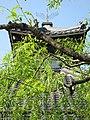 Kinosakicho Imazu, Toyooka, Hyogo Prefecture 669-6103, Japan - panoramio (2).jpg