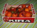 Kira clementines.JPG