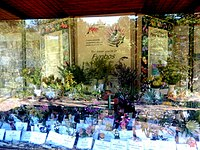 Kirstenbosch National Botanical Garden by ArmAg (22).jpg