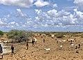 Kismayo city.jpg