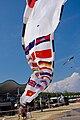 Kite festival Vung Tau 2009, 04.jpg