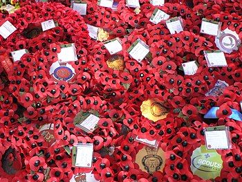 "Artificial ""remembrance poppies"" at ..."