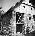 Kombinacija (novo) štale (hleva) in kozolca, Plužnje 1954.jpg
