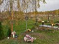 Komunalny Cmentarz Południowy w Warszawie 2011 (38).JPG