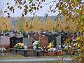 Komunalny Cmentarz Południowy w Warszawie 2011 (63).JPG