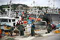 Korea-Gyeongju-Gampo Port-Fishermen-01.jpg