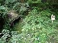 Koya Pilgrimage Routes-Mitanizaka 7.jpg