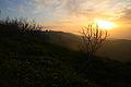 Krak Sunset - Flickr - edbrambley.jpg