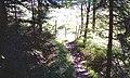 Kufstein - Hintersteiner See - panoramio (43).jpg