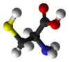 3D model of the amino acid cysteine