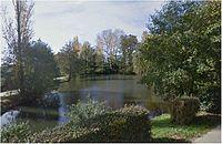 La treille-étang-La Cour-Marigny.JPG