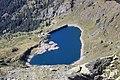 Lago e diga di Pescegallo - panoramio.jpg