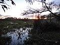 Laguna atrás del albardón del eucaliptal - panoramio.jpg