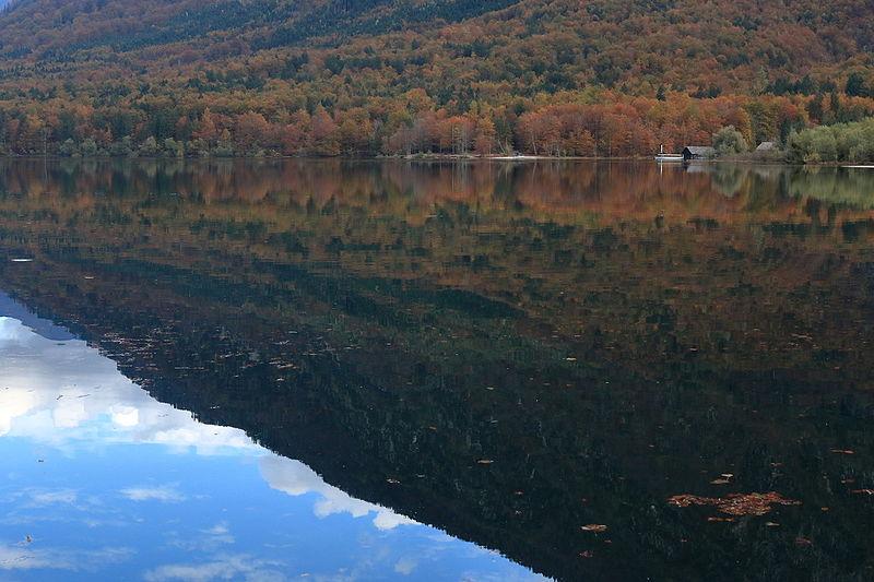 File:Lake Bohinj (22672252540).jpg