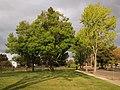 Lakeshore Park Newark April 2011.jpg