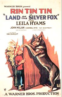<i>Land of the Silver Fox</i> 1928 film by Ray Enright