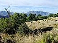 Landschaft in der Sierra Nevada08.jpg