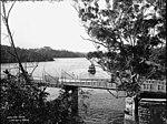 Lane Cove River (2362691915).jpg