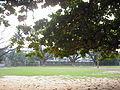 Large playground at NDC.JPG