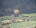 Latschinig 1998-10-26.jpg