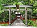 Le Torii du Futurasan jinja (Nikko, Japon) (42233932065).jpg