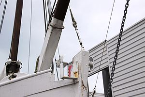 Le sloop ostréicole Petit Normandie (13).JPG