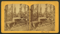 Leadville, Colorado. (Apr. 23, (18)79), by Gurnsey, B. H. (Byron H.), 1833-1880.png