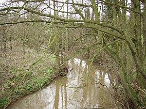 Ledwyche Brook - Ledwyche near Caynham