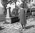 Lesene vile za seno, Ana Kravanja, Kal 1952.jpg