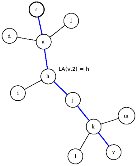 Level Ancestor Problem