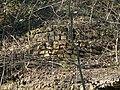Limekiln at Bull Bridge - geograph.org.uk - 1231214.jpg