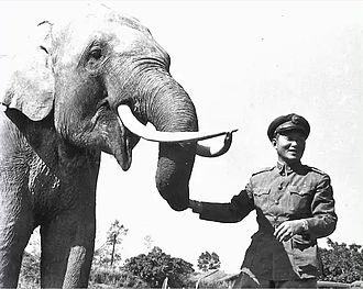 Sun Li-jen - Sun Li-jen with the popular army elephant Lin Wang